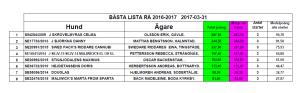 Rå-listan 2017