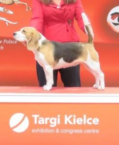 Greta Kielce